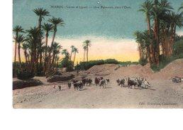 MAROC---(scènes Et Types)---une Palmeraie Dans L'oasis--voir 2 Scans - Maroc
