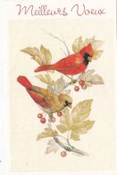 Oiseaux Sur Un Rameau - Neujahr