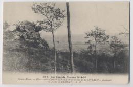 Steinbach (68 - Haut Rhin) - Observatoire D' Hirnelestein Dominant La Plaine De Cernay - La Grande Guerre 1914-18 - Guerre 1914-18