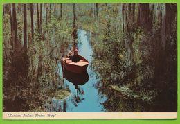 GEORGIA Okefenokee Swamp Park Near Waycross Seminol Indian Water - Way - Etats-Unis