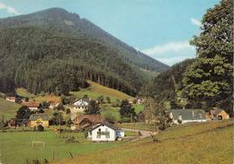 Pernitz Ak107181 - Pernitz
