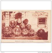 CDZTP4577CPA-LFTMD8531TAVI.Tarjeta Postal DE CADIZ.Barriles De Vinos..BODEGAS DE PEDRO DOMEQ  De JEREZ DE LA FRONTERA - Viñedos