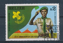 Belize 1982 Mi: 651 Yt:  (Gebr/used/obl/o)(1800) - Belize (1973-...)