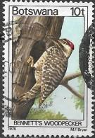 BOTSWANA 1978 Birds -  10t. - Bennett's Woodpecker FU - Botswana (1966-...)