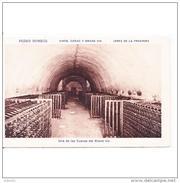 CDZTP4581-LFTD8541TAEQ.Tarjeta Postal DE CADIZ.Cueva De Envejecimiento.BODEGAS DE PEDRO DOMEQ  De JEREZ DE LA FRONTERA - Equipos