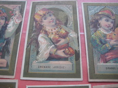 6 Litho Trade Cards Compl Set CR 1-3-4 Impr Courbe Rouzet PUB C1880 MANTES Printer:  Vve J. Elie -Fruit GRENADE ORANGE - Chromos