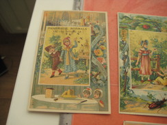 12 Litho Trade Cards Compl Set237  CR 2-2-11 Impr Courbe Rouzet PUB C1880 Animals Escargot Viper Chocolat MAGNIEZ Amiens - Chromos
