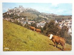 Postcard Saint Flour Vue Generale My Ref B2722