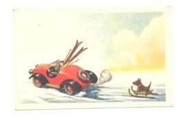 FANTAISIE - Humour, Chien Sur Un Traîneau Tiré Par Une Voiture (style Ski Nautique) .(rl) - Humour