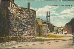PIE-17-T.912 : BINCHE  LES REMPARTS - Binche
