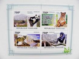 SALE! Togolaise 2011 Animals Habitat Fragmentation, Panda, Wolf, Monkey, Felin Puma Panthera Cat - Togo (1960-...)