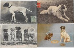 Lot 152 De 10 CPA CPSM Chien Dog Déstockage Pour Revendeurs Ou Collectionneurs - Postcards