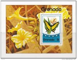 Grenada  Butterflies