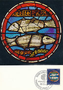 D29445 CARTE MAXIMUM CARD 1968 SWITZERLAND - FISH PISCES POISSONS CP ORIGINAL - Astrologia