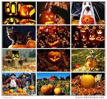 12 Postcards Of Pumpkin Jack Lanterns Black Cat Halloween ,  Postkarte Carte Postale - Halloween