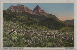 Steinen Gegen Den Mythen Im Frühling - Photo: J. Gaberell No. 17893 - SZ Schwyz