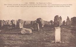 CARNAC LES ALIGNEMENTS DU MENEC - Dolmen & Menhirs