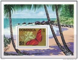 Dominica Butterflies