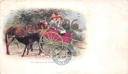 Ten Minutes For Lunch - Donkey Children âne Enfants - CO Colorado - Etats-Unis