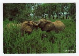 Cpm TANZANIA TANZANIE Eléphants - Tanzanie