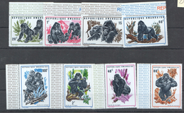 P45 1970 RWANDA FAUNA WILD ANIMALS MONKEYS GORILLES 1SET MNH