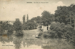 Messein : Un Coin Du Bois De Greve - France