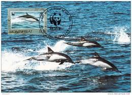 WWF - 103,32 - CM-MC - € 1,06 - 25-9-1990 - $1,15 - Dolphins - Montserrat 1094212 - Montserrat