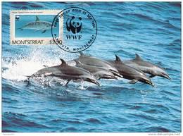 WWF - 103,34 - CM-MC - € 1,19 - 25-9-1990 - $3,50 - Dolphins - Montserrat 1094212 - Montserrat