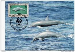 WWF - 103,31 - CM-MC - € 1,00 - 25-9-1990 - 90c - Dolphins - Montserrat 1094212 - Montserrat