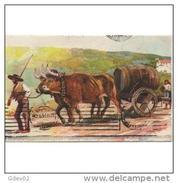 PTGLTP1230CPA-LFTMD1505TAOTTARJETA POSTAL DE PORTUGAL.Carro De Bueyes En El Campo,cargados Con Tina De Vino. - Animales
