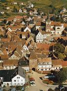 G , Cp , 68 , TURCKHEIM , Vue Générale , Au Premier Plan, La Porte De France (1313) Surmontée D'un Nid De Cigognes - Turckheim