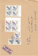 Sudan Registr.com.,cover2006, 2 Blocv's Of 4 Birds Reval.Black + Red + 1 Black Inverted+Pair Dble 1 Invert.Rare-SKRILL P - Soudan (1954-...)