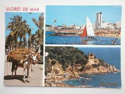 Postcard Lloret De Mar Costa Brava Multiview  My Ref B2741 - Other
