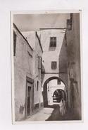 CPA PHOTO TUNIS, UNE RUE ARABE - Tunisia