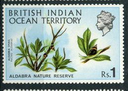 British Indian Ocean Territory 1971 1r Snail Issue  #41 MH - British Indian Ocean Territory (BIOT)