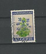 1972  N° 552  VIOLA ODORATA 15 . 11 . 1972   OBLITERE - Algeria (1962-...)