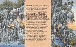 Legend Of The Spanish Moss - Poem Verse Nature Tree Plant - Boston