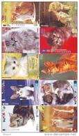 LOT 50 Telecartes + Prepayees Differentes Japon * CHATS * CATS  * KATZE * KATTEN (LOT 226) Prepaid Cards Japan - Télécartes