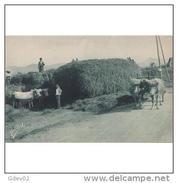 VCYTPA3749CPA-LFTMD11430TAEQ.Tarjeta Postal De VIZCAYA.Bueyes,carreta.PAIS VASCO - Equipos