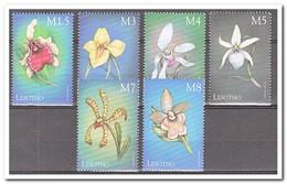 Lesotho 1999, Postfris MNH, Flowers, Orchids - Lesotho (1966-...)