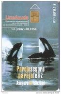 TARJETA DE CUBA DE LINEA AYUDA DE UNAS ORCAS (WHALE)