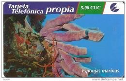 TARJETA DE CUBA DE UNAS ESPONJAS MARINAS 5 CUC FECHA 5-12-2008