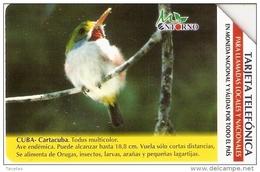UR-017 TARJETA DE CUBA DE UN COLIBRI (BIRD-PAJARO)