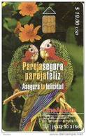 125 TARJETA DE CUBA DE 2 LOROS (SIDA)  (PARROT-LORO)