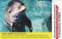 UR-034 TARJETA DE CUBA DE UN DELFIN (DOLPHIN)