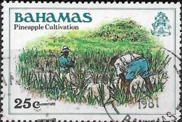 BAHAMAS 1980 Pineapple Cultivation  - 25c Multicoloured  FU - Bahamas (1973-...)