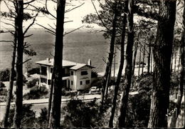 33 - BASSIN D'ARCACHON - Villa - France