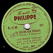 78 T  20 Cm.  état TB  Lucienne  VERNAY  -  LA COLLINE AUX OISEAUX - MON PERE AVAIT 500 MOUTONS - 78 T - Disques Pour Gramophone