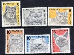 BULGARIA 1989 Cats MNH / **.  Michel 3808-13 - Domestic Cats