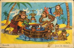 CPA. - Illustrateur ROB-VEL - Zooville - Jour De Lessive - BE - Andere Illustrators